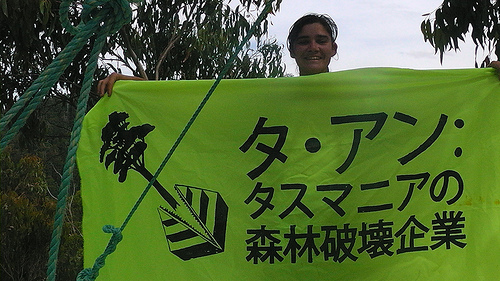 A Green activists holds a banner to warn Ta Ann's Japanese wood buyers