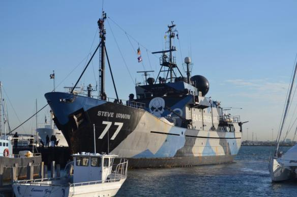 (Photo: Sea Shepherd flagship, Steve Irwin)
